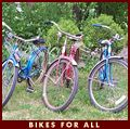 Bikes for everyone in the family